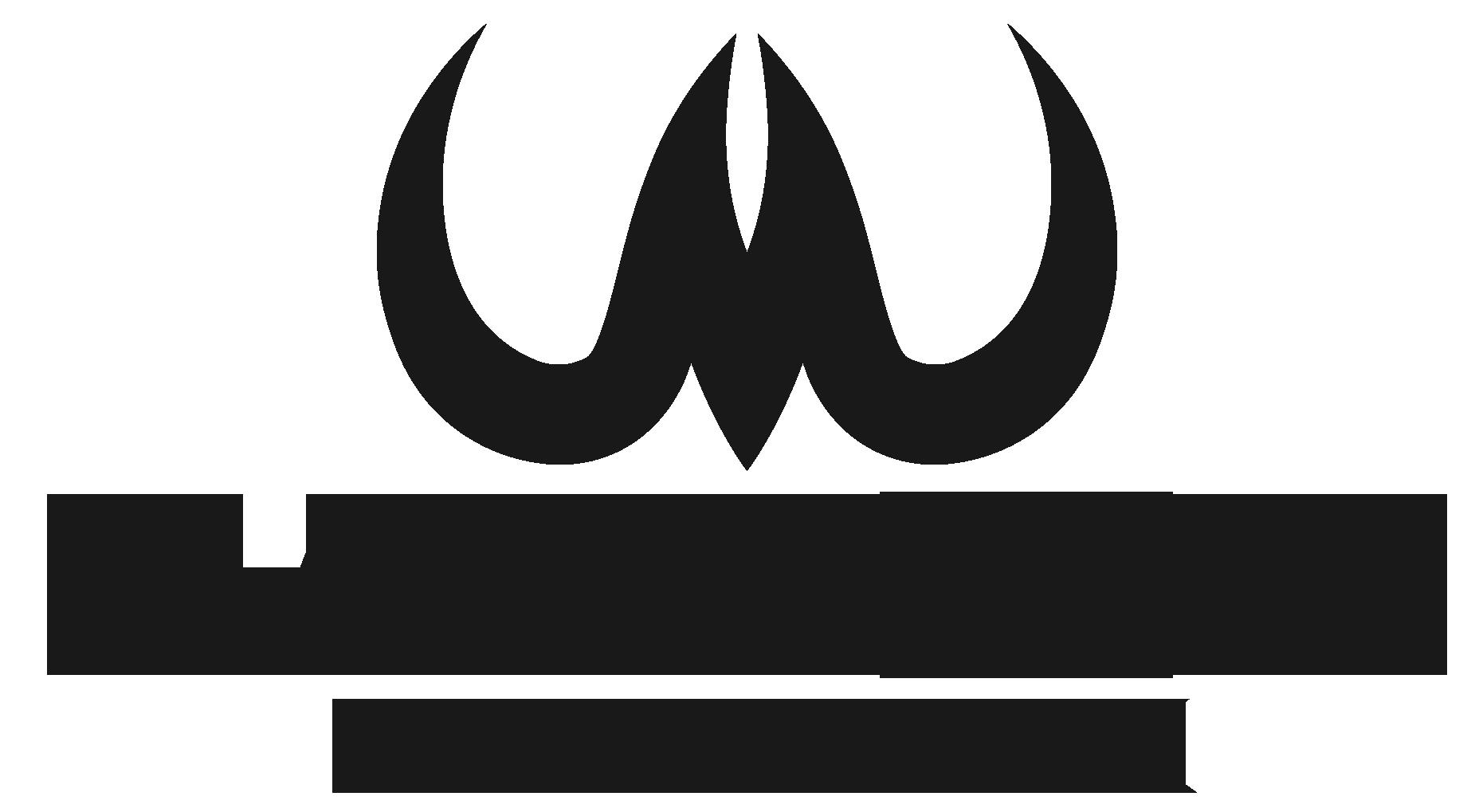 Mammoth peak customizable gun cases and accessories buycottarizona